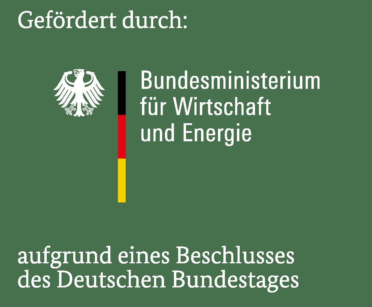Logo- Förderung durch das BMWi